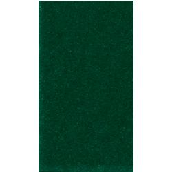 IDVCE10 VelCut Evo Zelená 10 semišová nažehlovací fólie / iDigit