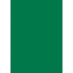 Laser Flex Zelená 25 nažehľovací fólia / SEF Textile